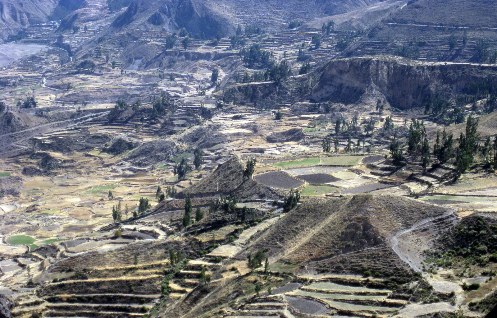 Hell of a hike – My trek in Colca Canyon